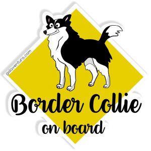 Pegatina Border Collie on board o Border Collie a bordo