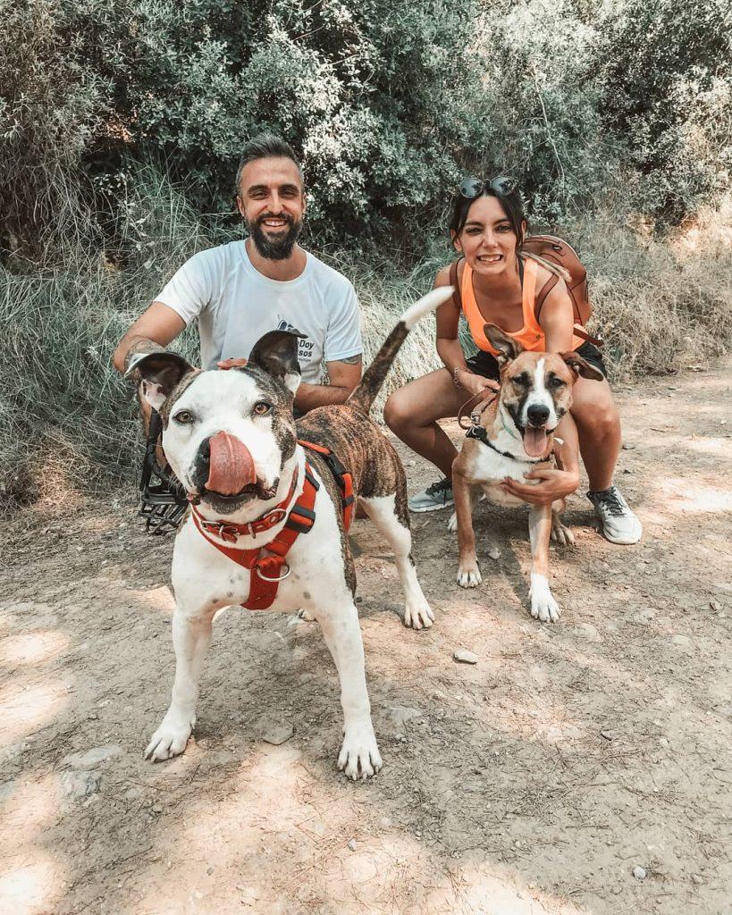 Galaventura paseando perros en adopción del refugio Bu Bup Park de la fundación Altarriba