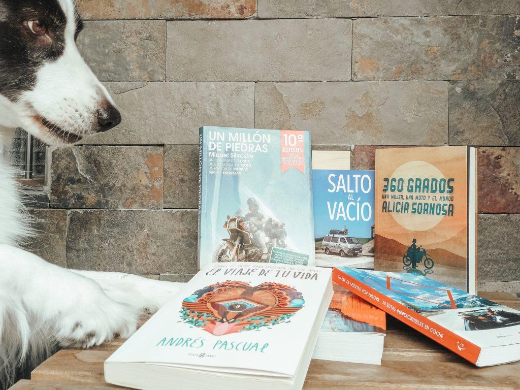 Border collie con libros de viajes